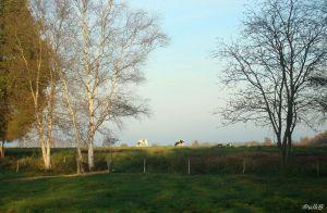 Landschaft Huvenhoopsmoor