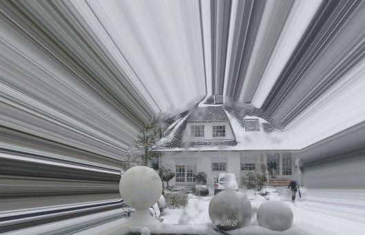 Erster Schnee Jan. 2016 g..